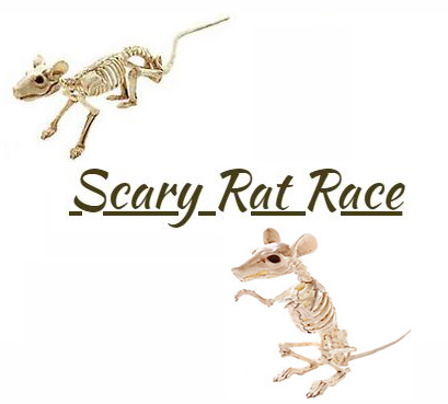 Scary Rat Race Review